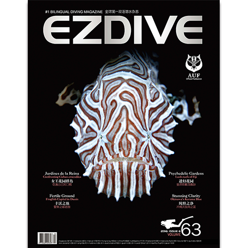 EZDIVE Diving Magazine Issue 63