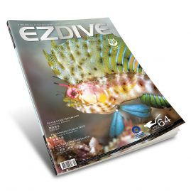 EZDIVE Diving Magazine Issue #64