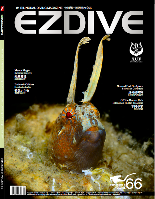 EZDIVE Diving Magazine Issue 66