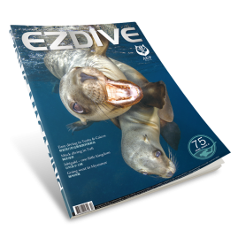 EZDIVE Diving Magazine ISSUE #75