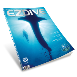 EZDIVE Diving Magazine ISSUE #80