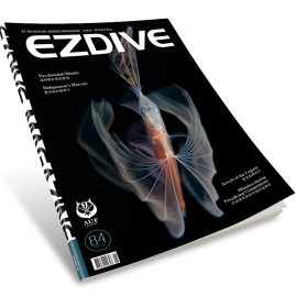 EZDIVE Diving Magazine ISSUE #84