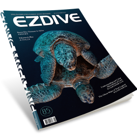 EZDIVE Diving Magazine ISSUE #85