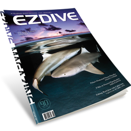 EZDIVE Diving Magazine ISSUE #90