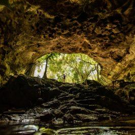 Cenotes Photo- Hunting in Yucatan for Xiimbalil Ja Festival
