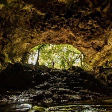 Xiimbalil Ja 展览── 在尤卡坦半岛逐影天然井